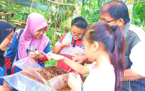 ROMBONGAN SK Lok Yuk menimba pengalaman dengan melawat Ladang Madu Kelulut di Sipitang.