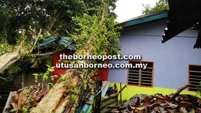 Keadaan salah sebuah rumah yang ditimpa pokok di Kampung Melayu Pasa, Betong semalam.