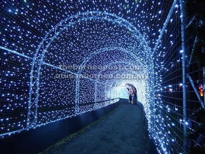 Terowong cahaya yang pastinya akan memukau perjalanan anda untuk bertemu dinosaur di Miri.