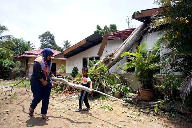 Siti membuang dahan pokok yang patah selepas sebatang pokok tumbang menghempap rumahnya dalam kejadian ribut di Kampung Pulau Ketam petang, Jitra semalam. — Gambar Bernama
