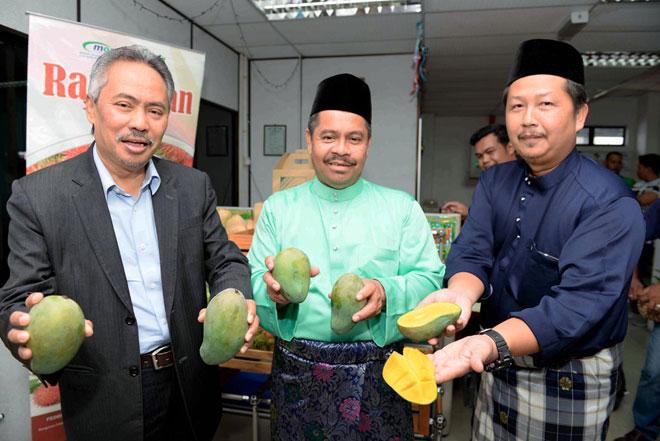 Ahmad (kiri) menunjukkan buah mempelam harumanis yang ditanam di Kodiang, Kedah pada Majlis Jamuan Hari Raya FAMA Negeri Kedah, Alor Setar semalam. Turut hadir Anuar (dua kanan) dan Hasrol. — Gambar Bernama