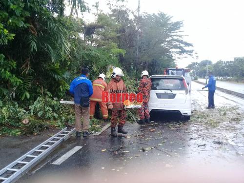 Anggota bomba mengalihkan dahan pokok yang menghempap kereta.