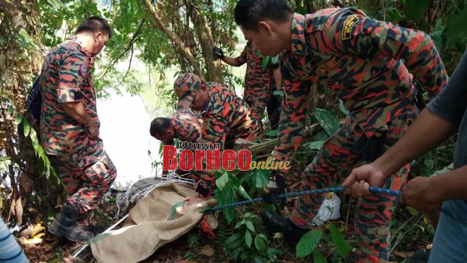 Reptilia dianggarkan seberat 250kg berjaya ditarik ke darat oleh anggota bomba sebelum diserahkan kepada pihak berkuasa