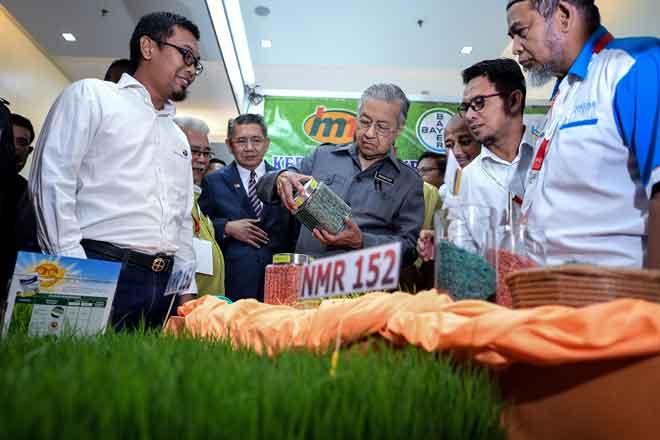 Tun Dr Mahathir melihat anak benih padi yang menggunakan teknologi 'Bayer SeedGrowth' ketika melawat tapak pameran sempena majlis perasmian Konvensyen Padi Kebangsaan 2019 di salah sebuah hotel terkemuka  semalam. — Gambar Bernama