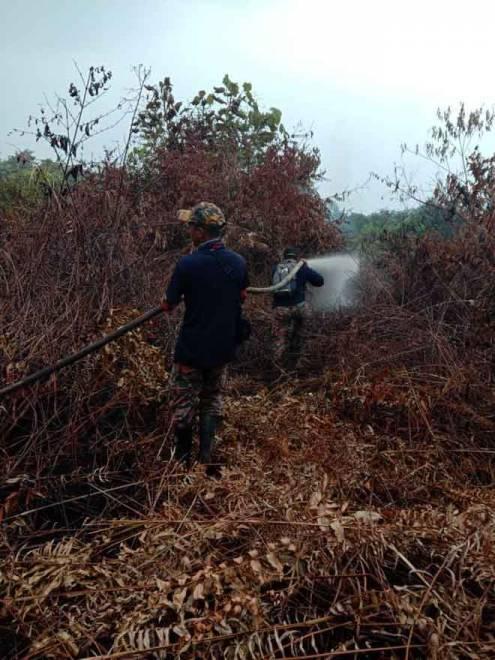 Keadaan kebakaran hutan di Sektor A Kampung STC Sri Aman pada petang semalam. — Foto JBPM