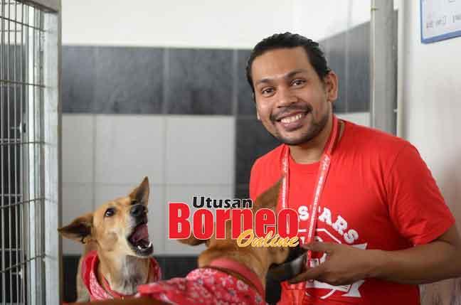 Dua daripada  empat anjing penyelamat AirAsia turut menikmati keceriaan musim perayaan.