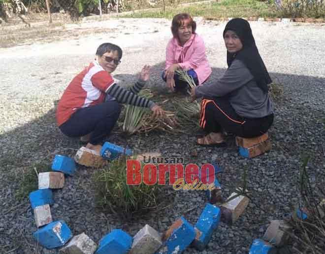 Golongan wanita sedang membersihkan kawasan tabika.