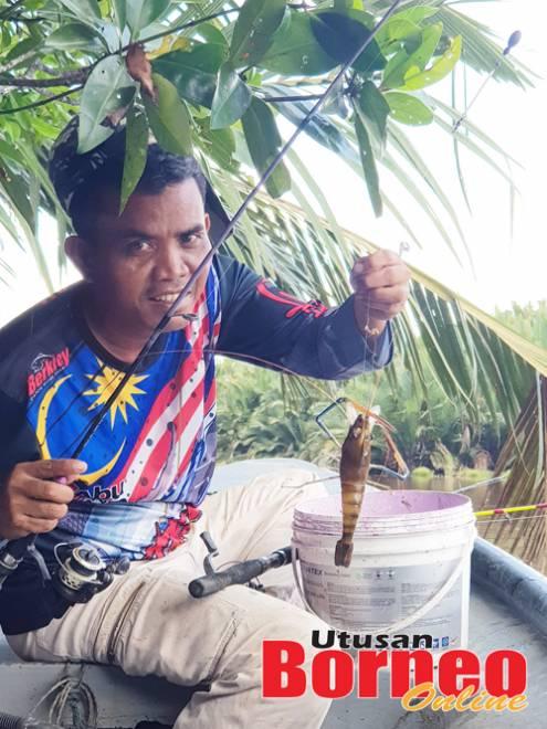 Salim berpuas hati dengan hasil seekor sepit biru remaja