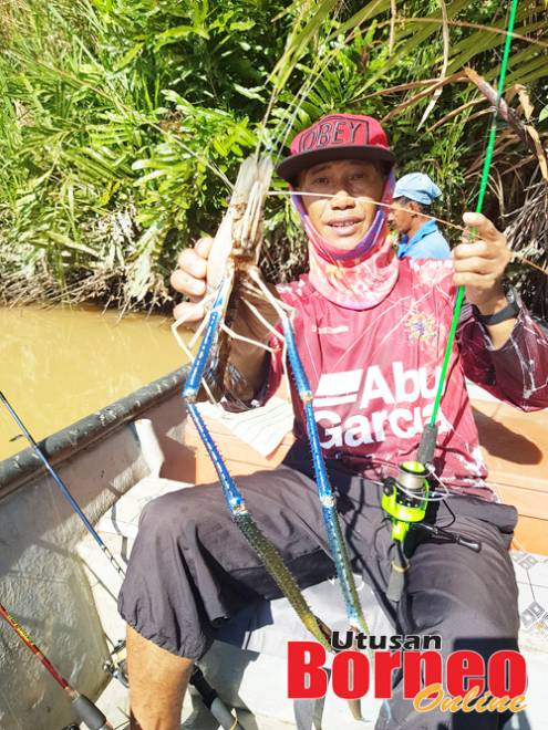 Pak Chad berjaya menaikkan seekor sepit biru saiz jenggo di lubuk Nelayan sungai Nabahan.