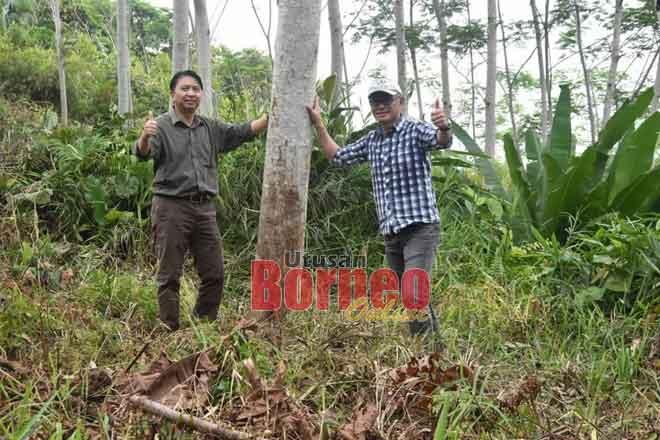 Hamden (kiri) bersama yang lain semasa mengadakan lawatan ke salah sebuah kawasan ladang hutan baru-baru ini.
