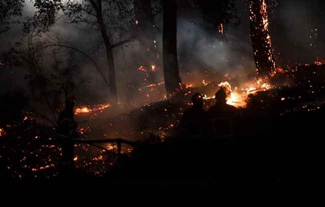 Anggota bomba cuba memadam kebakaran hutan yang marak di hutan Chibrta, barat daya Perancis kelmarin. — Gambar AFP