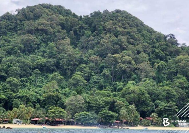 Hutan Simpan Pulau Tenggol yang diwartakan sejak 1941 itu berkeluasan 207 hektar dan merupakan 'hutan dara' atau masih terpelihara daripada sebarang aktiviti termasuk pembangunan serta pencerobohan. -Gambar Bernama