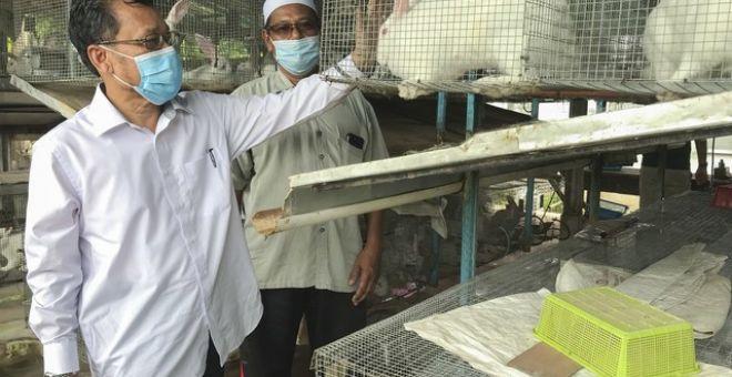 CheAbdullah (kiri) mendengar penerangan daripada pemilik projek ternakan arnab, Ismail Jusoh, 57, sewaktu melawat projek ternakan terbabit di Kampung Lambor, Wakaf Bharu hari ini. - Gambar Bernama