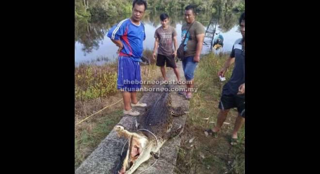 TEWAS: Luang (kiri) berpuas hati dengan tertangkapnya buaya dipercayai membaham anak perempuannya tahun lalu dan diakui Jampang dan beberapa penduduk kampung yang menyaksikan kejadian tersebut.