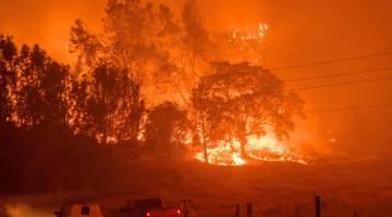 MARAK: Anggota bomba memerhatikan kemaraan 'Detwiler Fire' dekat bandar Mariposa, California kelmarin. — Gambar AFP