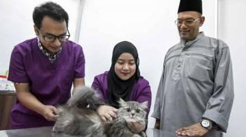 POPULASI LEBIH TERKAWAL: Khalid (kanan) melihat Pengurus Vet O Vet Kota Bharu Dr Hafizie Mahadi (kiri) melakukan pemeriksaan kesihatan ke atas seekor kucing pada Hari Bertemu Vet Dr Kucing dan Beraya Bersama Si Comel di Wisma Bakti, Pengkalan Chepa di Kota Bharu baru-baru ini. — Gambar Bernama