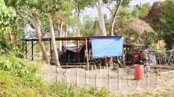 LOKASI yang diserbu polis di Kampung Lapasan, Tuaran ketika perlagaan sabung ayam dilakukan.