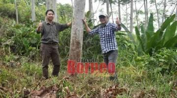 LAWATAN: Hamden (kiri) bersama yang lain semasa mengadakan lawatan ke salah sebuah kawasan ladang hutan baru-baru ini.
