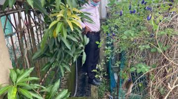 TINJAU: Calvin membuat tinjauan di kawasan belakang perumahan Taman Tinosan.