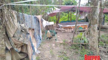 SABUNG AYAM: Lokasi yang diserbu polis dipercayai tempat aktiviti perjudian sabung ayam dijalankan.