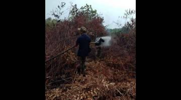 SEMAKIN PULIH: Keadaan kebakaran hutan di Sektor A Kampung STC Sri Aman pada petang semalam. — Foto JBPM